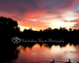 Sunrise with ducks, Fine Art Photography