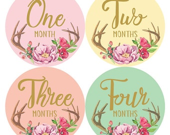 Floral Watercolor Monthly Baby Milestone Stickers, Baby Girl Monthly Bodysuit Stickers, Baby Shower Gift-Months 1-12, Petite Folio