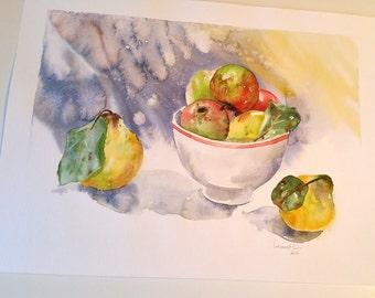 Watercolor still-life - apples and quinces / dead nature Watercolour - apples and Quince