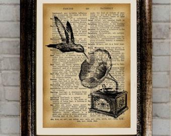 Hummingbird Art, Hummingbird Print, Hummingbird Drawing, Hummingbird Wall Art, Illustration, Hummingbird decor