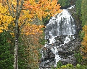 Waterfall with Fall Foliage