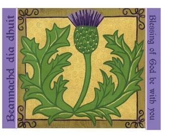 Scottish Thistle Print
