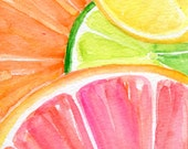 Ruby Red Grapefruit, Lemon, Orange, Lime slices on aqua Watercolor Painting, Original Fruit ART, Citrus Fruit Watercolor,4 x 6