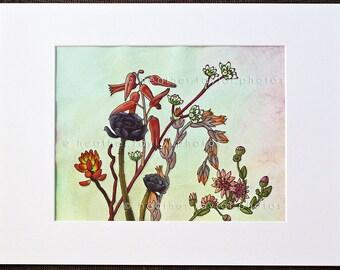 Cactus Medley - Original Drawing