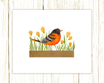Baltimore Oriole Print -- bird art -- bird art 52 birds stephanie fizer coleman illustration orange bird