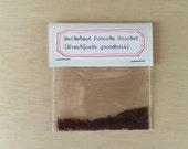 Buckwheat Pancake Bracket Spore Pack