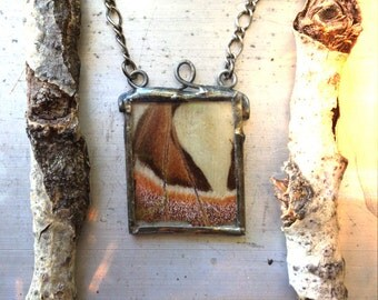 In and Out the Window. Butterfly Moth Pendant