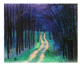 Spring rain, 16x20 inches #Blue Landscape tree art, wall art, nature photography, one lane roads #roads #natureart #Hiking
