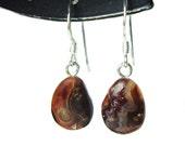 Fire agate french hook dangle earrings