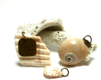 Genuine Drilled Beach Shells BEACHCOMBER Charms Authentic Ocean Seashells Drilled Jewelry Beads Dreaming of the Sea Set