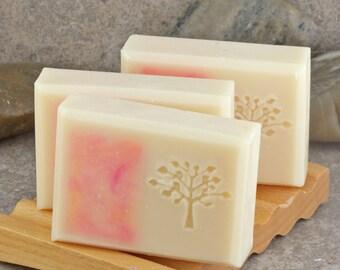 Grapefruit Mango Decorative Coconut Milk Soap with Tree Stamp