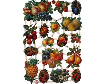 Made In Germany Die Cut Paper Scraps With Fruit  7274