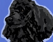 Black Toy Poodle Pop Art Dog Painting Print Colorful