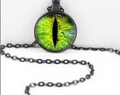 Dragon Eye Necklace, Cat Eye Pendant, Animal Eye Third Eye Bohemian Gypsy Jewelry RW591