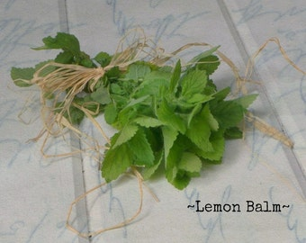 SALE  Lemon Balm / Lovely lemon  flavor fragrance / Organic fresh dried harvest / Cooking / soap lotion / gift for cook chef / yummy