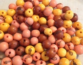 Organic Fair Trade 100 Pieces Of Pink Brown Yellow Brazil Acai Seed Beads