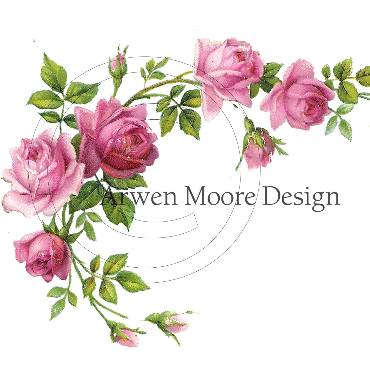 Beautiful victorian vintage chic shabby pink rose border for Cadre floral mural