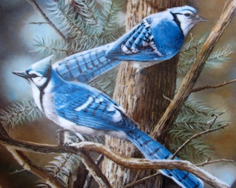 Vintage The Blue Jay China Collectors Plate 1984 Birds Artist Kevin Daniel Personal Collection Knowles Fine China