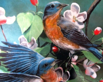 Vintage BLUEBIRD China Collectors Plate 1986 Birds Artist Kevin Daniel Personal Collection Knowles Fine China