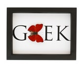 Geek Lover Framed Butterfly Taxidermy Display Gift