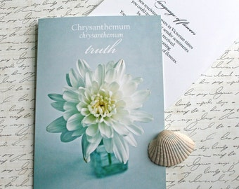 chrysanthemum Language of Flowers note card // Nature Floral Plant Life Botanical // Prairie Garden