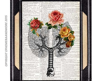 LUNGS as TREE of LIFE art print anatomical human lungs on vintage dictionary book page woodland surreal anatomy pulmonary doctor roses 8x10