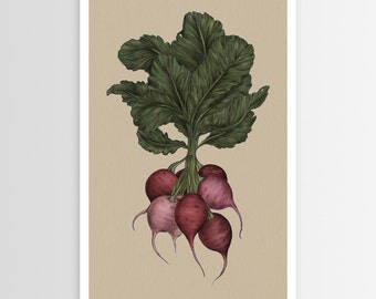 Jessica Roux's Radishes Poster