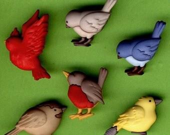 FEATHERED FRIENDS - Blue Bird Robin Garden Novelty Dress It Up Craft Buttons