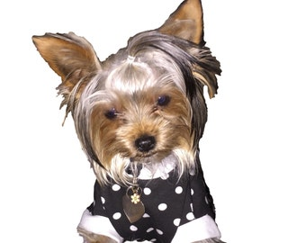 Black with White Polka Dots Dog Shirt - 4 Sizes available -  So Cute - Guaranteed to fit