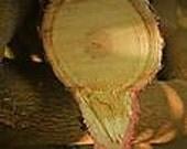 1 oz  Asian Sandalwood Fragrance Oil