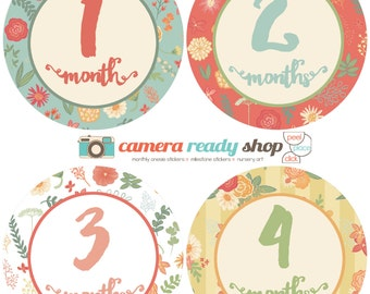 The Sara Collection: Monthly Baby Belly Stickers