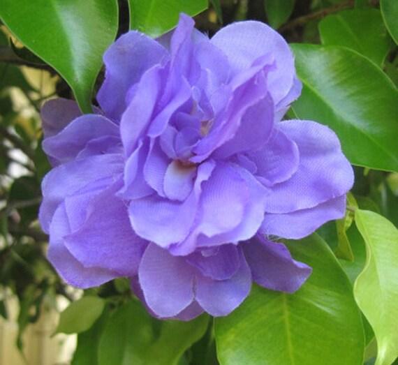 Hawaiian Light Purple flowers hair clip weddings by olgadesigns
