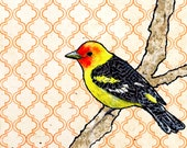 Thomas--2d Mixed Media Western Tanager Painting