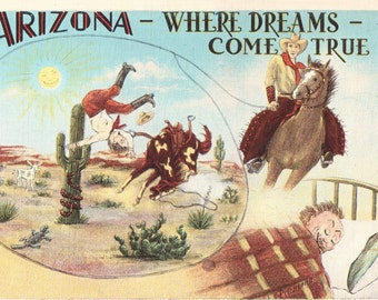 Arizona Where Dreams Come True, Funny Vintage Postcard, Unused