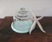 Glass Cloche With Wood Base, Light Blue Wooden Base Cloche