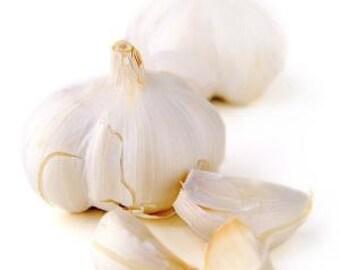 Garlic Moisturizing Conditioner - Hair Conditioner, Leave-In Conditioner, Hair Detangler