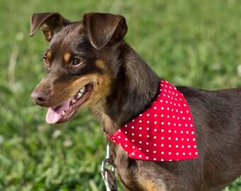 New color! Detachable bandana and collar set, polka dot, plaid bandana, removable bandana and collar combo, usagiteam bandana collar
