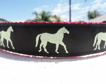 "Sale Dog Collar Pony 1"" wide Quick Release buckle adjustable - limited to one collar only"