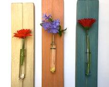 Popular items for wall vase on etsy for Test tube flower vase rack
