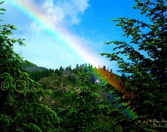 PHOTO CARD, Rainbow. trees, sky, blue, Ellen Strope, clouds, mountains, forest