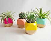 Geometric Succulent Cactus Planter (Plant not included)