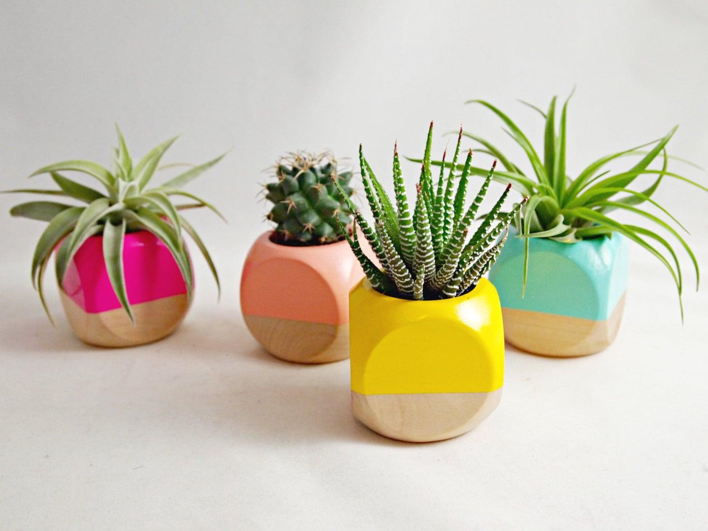 Mini geometric planter plant not included succulent - Macetas para centros de mesa ...