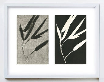 Botanical print set, zen wall art