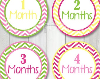 Baby Girl Month Stickers, Instant Download, Monthly Baby Stickers, Baby Milestone Stickers, 1st Year Baby Stickers, Newborn Stickers