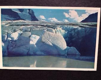 No 22 Ice Front Athabasca Glacier