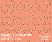 Dizzy Peach Geometry - ETSY KIT
