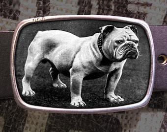 Bull Dog Belt Buckle 182