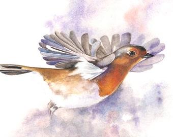 Robin Original Watercolor Painting -Paper size A4 -wall art print - bird art - art print - wildlife print