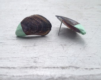 mussels in seafoam earrings.