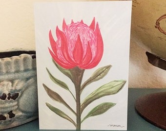 Protea Floral - 5x7 Greeting Card - Blank inside
